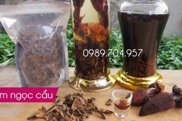 Cách ngâm rượu nấm ngọc cẩu ngon, khỏe và Đẹp mắt